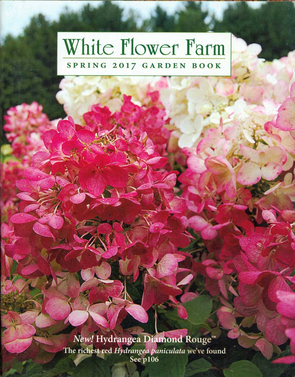 White Flower Farm, Connecticut, 8 x 10 in., 140 pp.