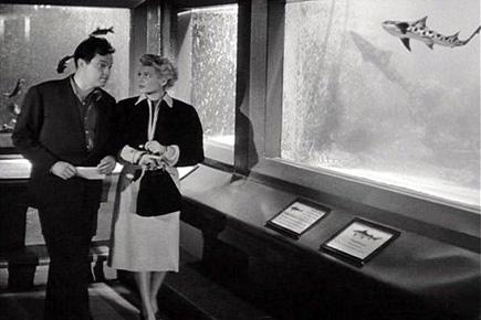 steinhardt aquarium