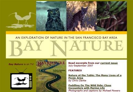bay nature