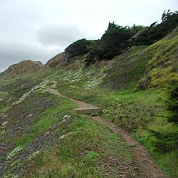 Land's End, San Francisco