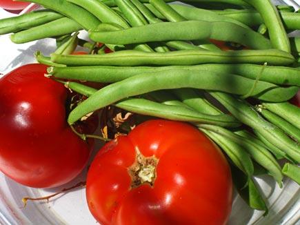 swimming pool garden veggies, august 1