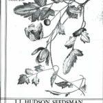 J. L. Hudson, Seedsman, California, 5.5 x 8.5 in., 96 pp.